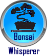 Go to Bonzai Whisperer